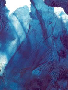 blåa blad
